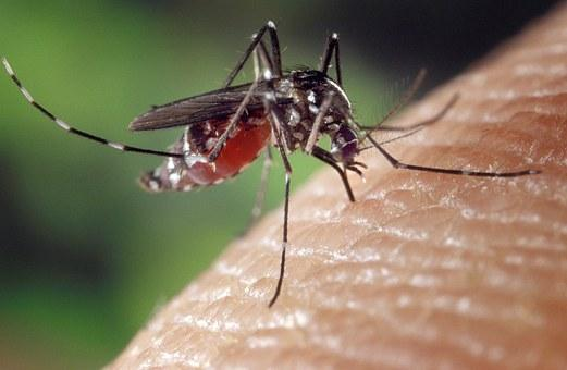 Promotoria cobra eficácia no combate à malária em áreas indígenas