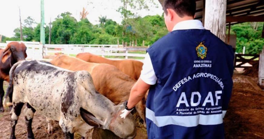 Concurso da Adaf com 208 vagas tem resultado final homologado no Diário Oficial