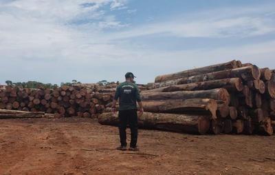 Serraria recebe nova multa de R$ 1,6 milhão por desmatamento no Amazonas