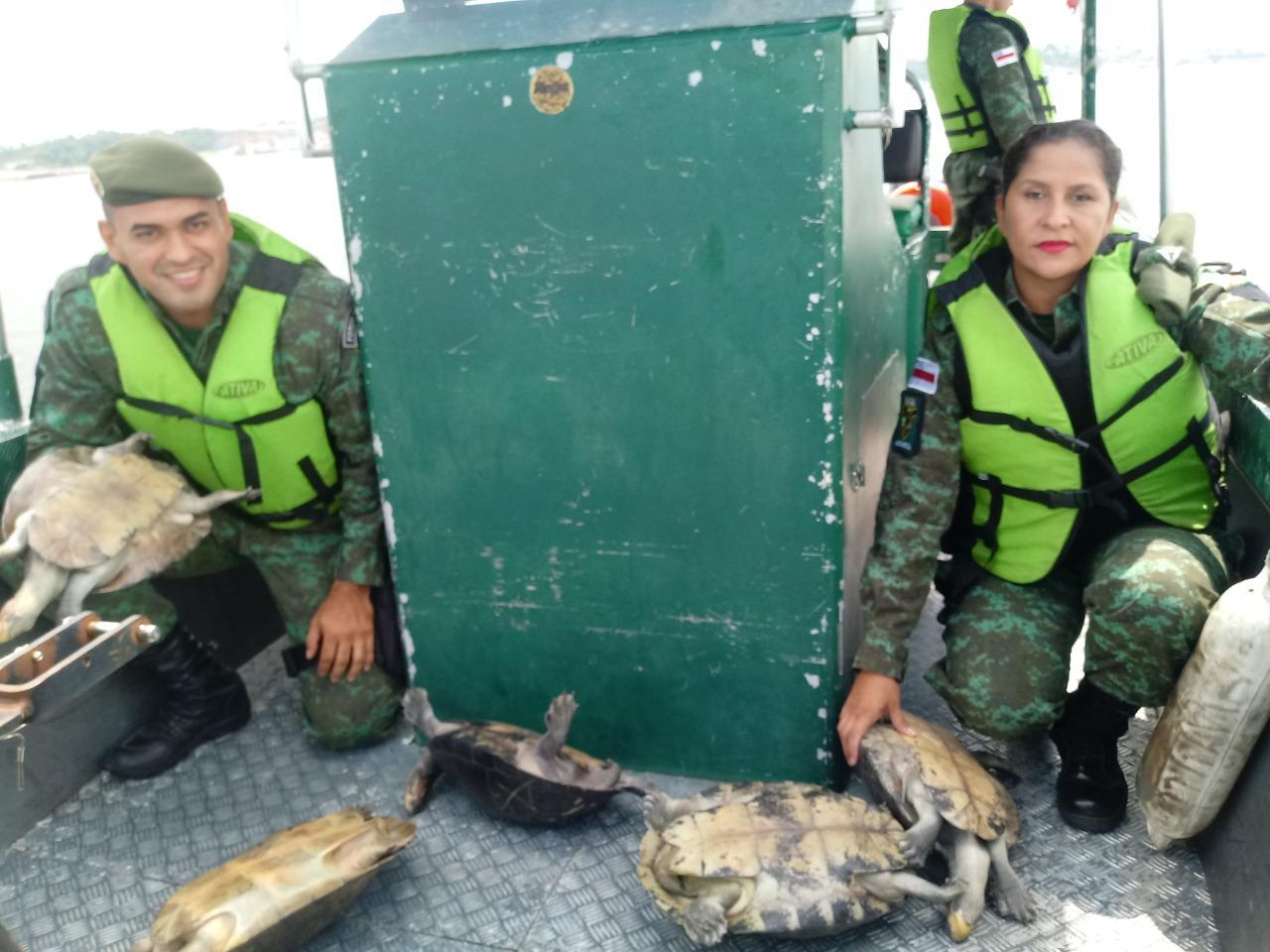 Resgate de animais silvestres cresce 92% até setembro, segundo Polícia