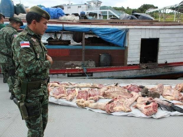 Batalhão Ambiental apreendeu mais de 400kg de carne de caça este ano no Amazonas