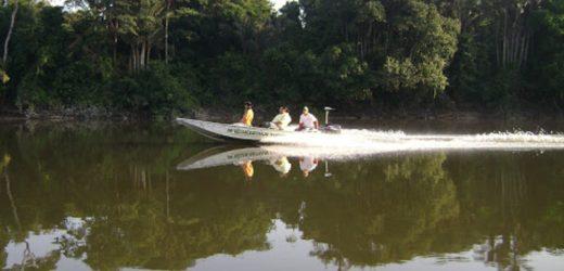 Natura lança aliança de empreendedorismo na Amazônia promove a economia de floresta em pé